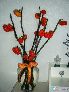 Have fun with Fall Crafts and Decorations
