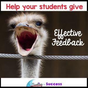 Do Your Students Know How to Give Feedback?