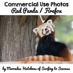 Red Panda aka Firefox