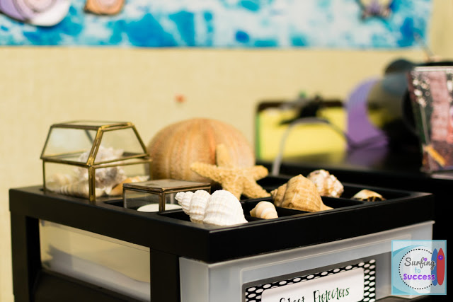 Ocean Theme Classroom: sea shells