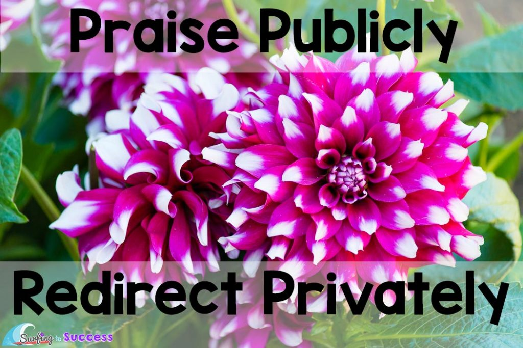 7 Springtime Survival Strategies | Praise Publicly Redirect Privately